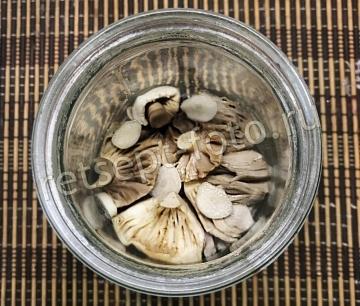 Сыроежки соленые горячим способом на зиму