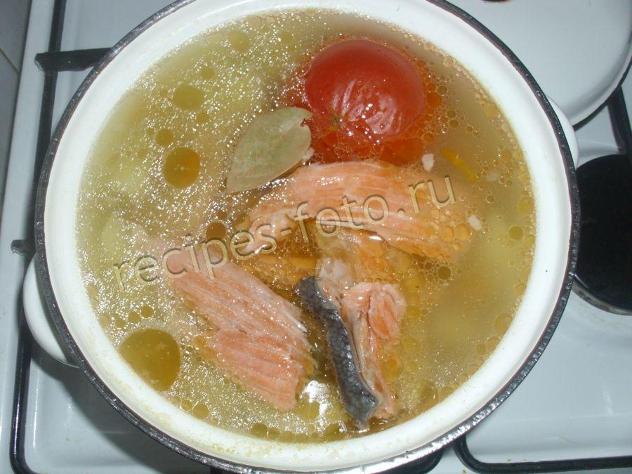 суп из щуки с рисом рецепт с фото