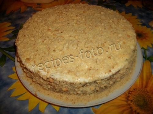 Торт без выпечки с творожным кремом и фруктами