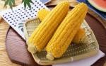 Как правильно варить молодую кукурузу в початках